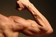 Muskelaufbau Ernährungs